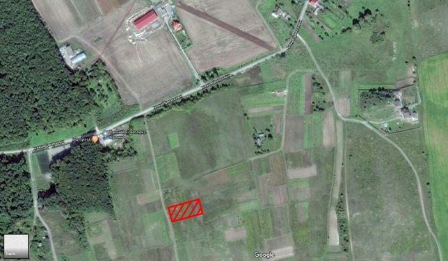 Продам земельну ділянку в с. Карпилівка