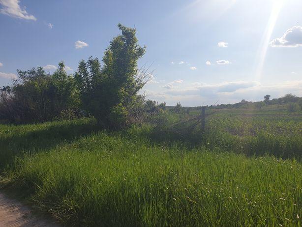 Продам земельный участок в Печенегах возле речки Северский Донец