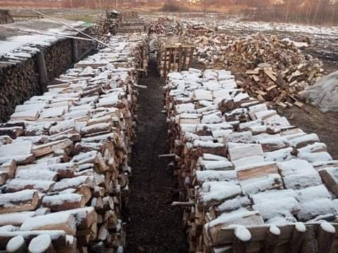 Drewno opalowe kominkowe
