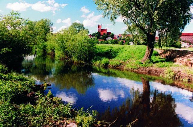 Wynajmę działkę ogródek Gniew rzeka Wierzyca las cisza spokój budynek