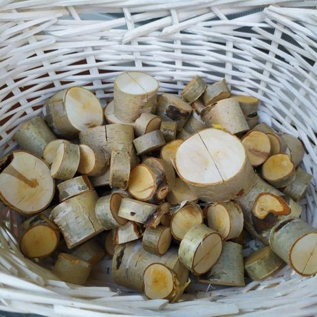 Talarki brzozowe( winietki)