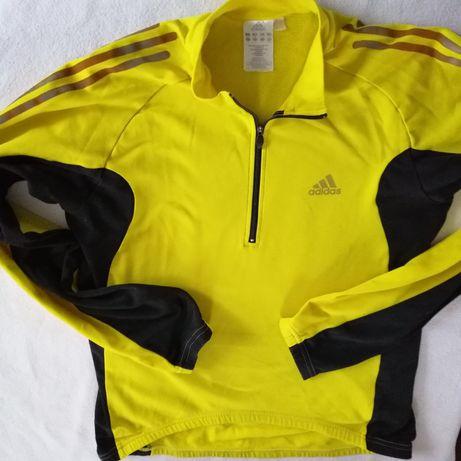 Bluza rowerowa Adidas L, spodenki Scott...