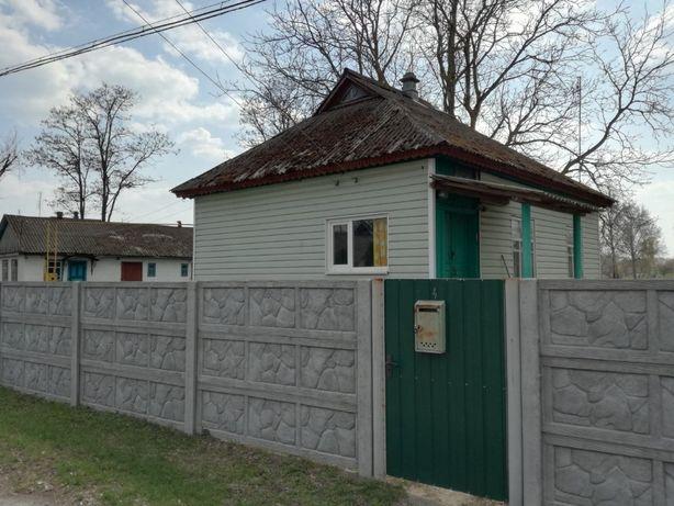 Продам будинок в смт. Лосинівка, Ніжинський район, вул. Українська