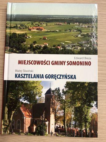 Miejscowości gminy Somonino, Kasztelania Goręczyńska