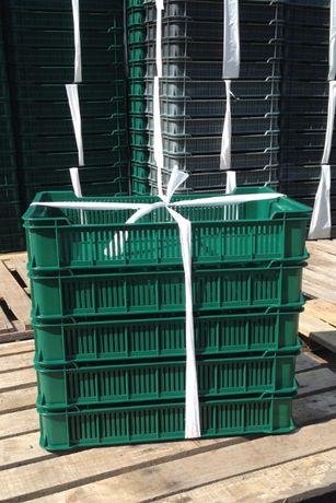 Ящик для ягід ЧЕШКА (600x400x115) на 10 кг. - 45 гр