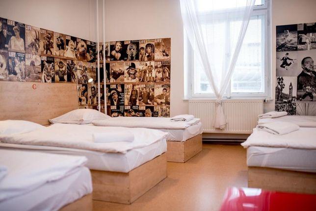 K9: Tylko firmy | kwatery | mieszkanie | dla firm | Hostel | Dom