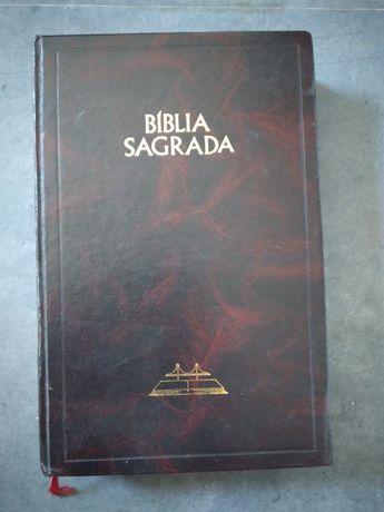 Bíblia Sagrada novo e velho testamento