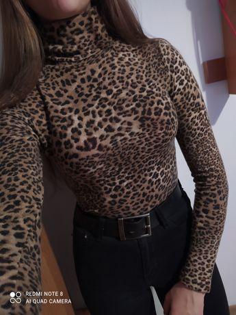Dopasowana koszulka z golfem w panterke rozmiar 36 Angie długi rękaw r