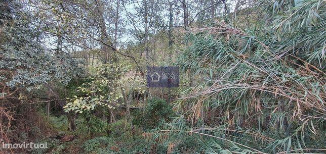 Vende-se terreno rústico Montinho das Canas GS 17489 GC