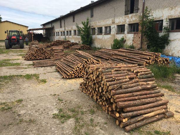 Stemple budowlane drewniane 3m ze Swadzimia nowe proste