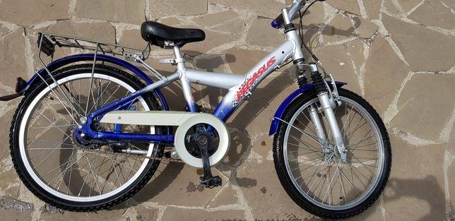Велосипед детский Pegasus