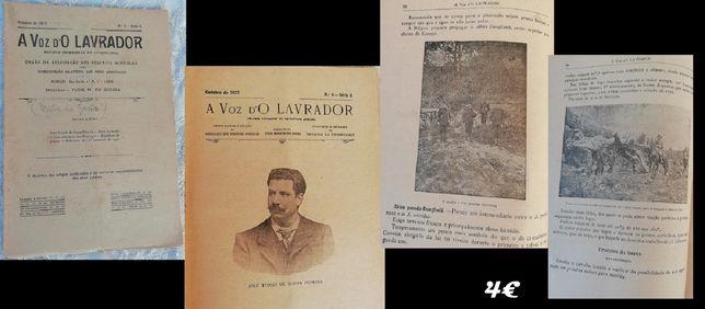 Revistas e jornais antigos,lavrador,seringador,Primavera,África do Sul
