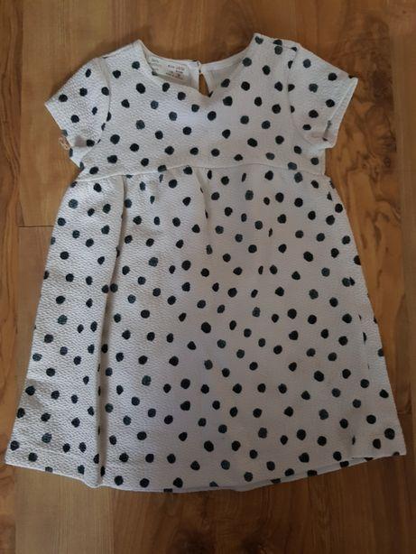 Sukienka Zara kropki
