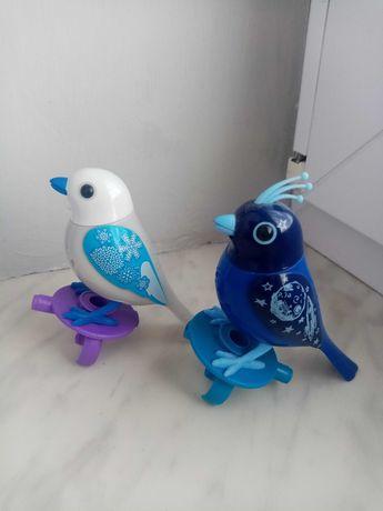 2 x  śpiewający ptaszek digibirds