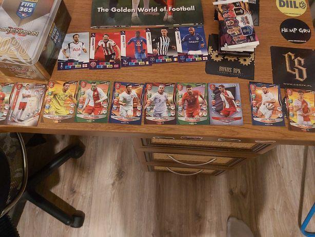 Karty piłkarskie FIFA 365 i Inne