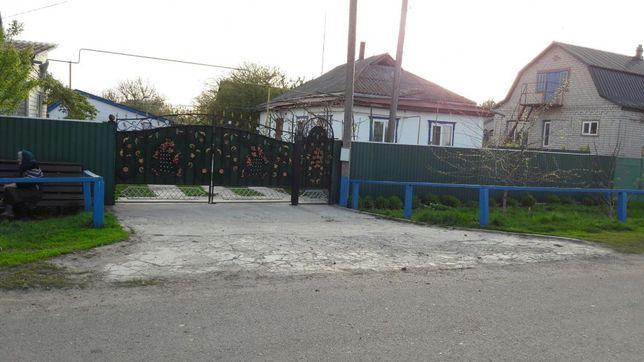 Ковані ворота, навіси, козирьки. Черкаська область.