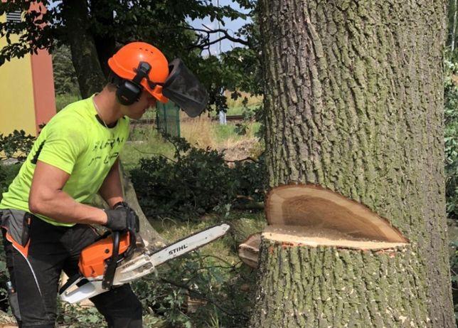 Wycinka pielęgnacja podcinanie drzew, karczowanie, frezowanie pni,