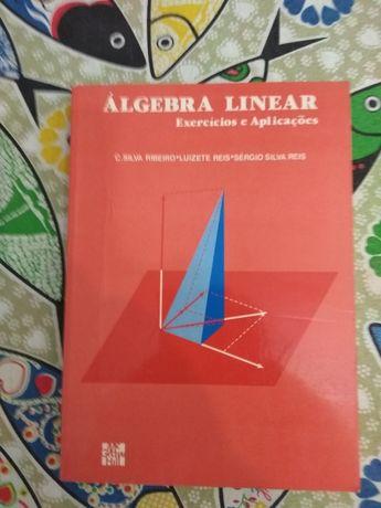 Livro Álgebra Linear - exercícios e aplicações