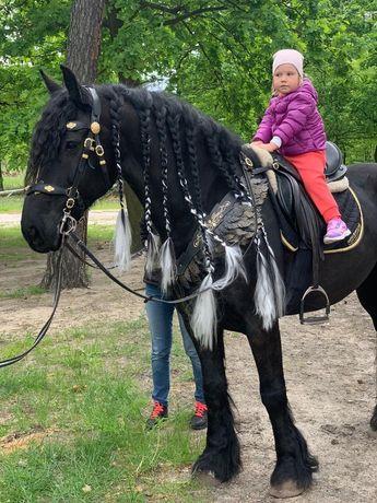 Уздечка лошадь конь кобыла пони