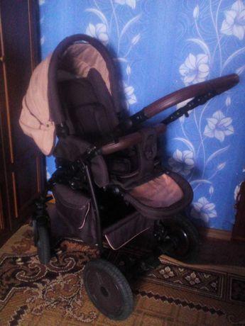 Детская коляска Anex Elana 2 в 1
