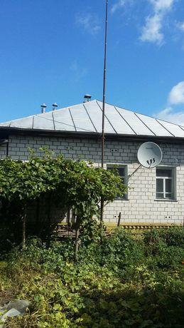 Продам дом с участком село Круты, черниговская область