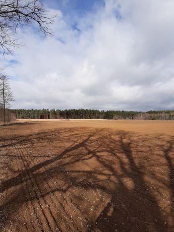 Gospodarstwo rolne 70 hektarów w jednym kawałku.