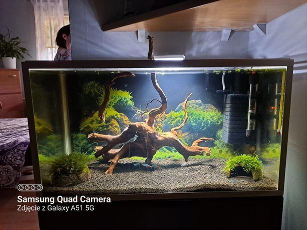 Akwarium 60x30 bez wyposażenia