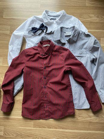 Zestaw koszul dla chlopca 140/152 + muszka HM, Wójcik, Reserved