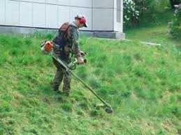 Покос травы, пил деревьев любой сложности