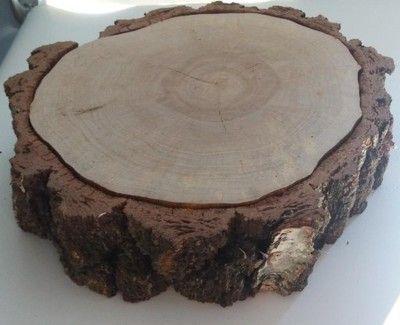 Duży Plastry drewna brzoza 45 cm gr.11cm na stolik