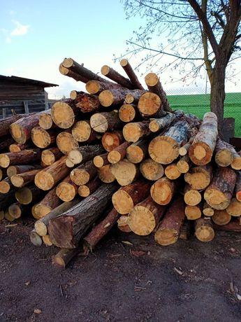 Drewno opałowe, metry, pocięte