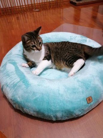 Cama fofa e quentinha feita toda manualmente para o seu gato