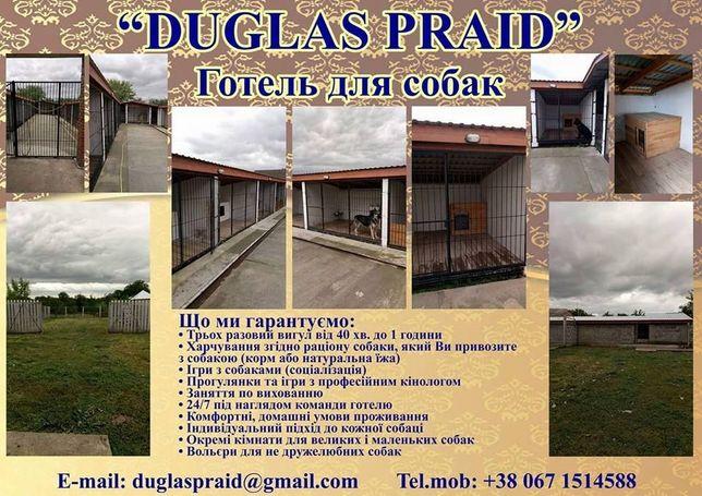 """Готель для собак """"DUGLAS PRAID"""""""