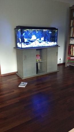 Akwarium 245l z pyszczakami