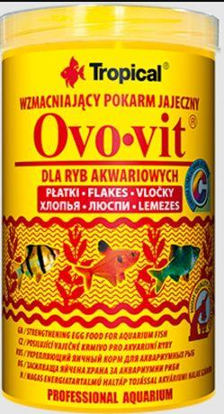 Tropical OVO-VIT 250ml - pokarm dla ryb akwariowych