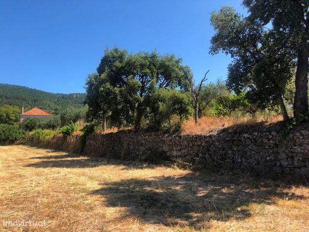 Moradia com terreno de 20.602m2, com Moradia, água e olival