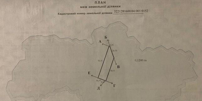 Земельна ділянка гоголів броварський район