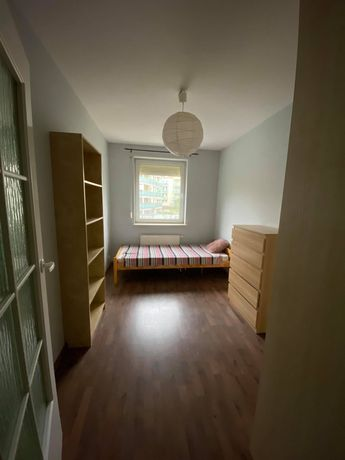 Jednoosobowy pokój do wynajęcia (zwierzolubny), Piątkowo