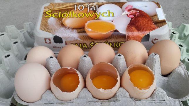 Jaja konsumpcyjne ściółkowe hurt jajka detal