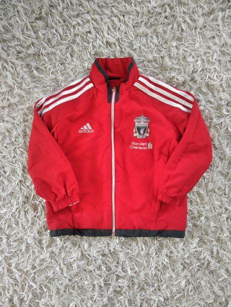 Kurtka Adidas Liverpool oryginalna sportowa trening chlopieca czerwona