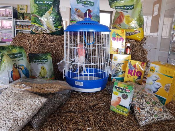 Pássaros, alimentação