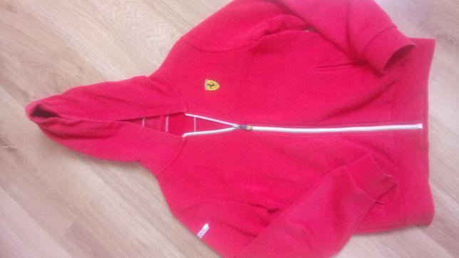 Bluza chłopięca firmy Ferrari