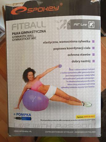 Piłka do ćwiczeń,fitness,rechabilitacji+ pompka