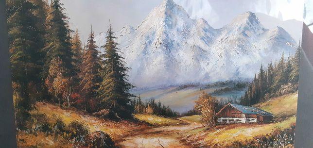 Obraz - pejzaż na ścianę (ramka 35x28 cm)