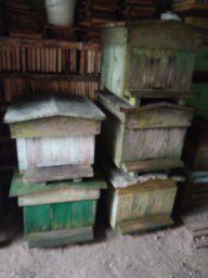Ule,miodarka,pszczoły,wirówka,pszczelarski