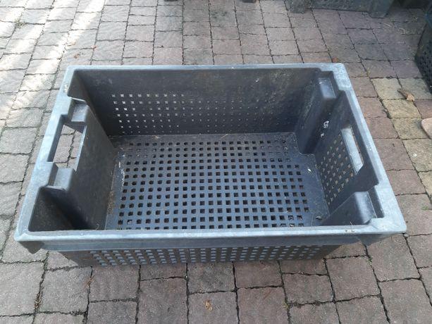 Ящик пластмасовий, харчовий б/у.