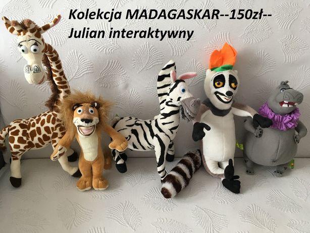 Zestaw Madagaskar