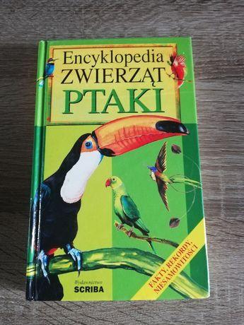 Książka Encyklopedia Zwierząt Ptaki Ilustrowana Fakty Rekordy Scriba