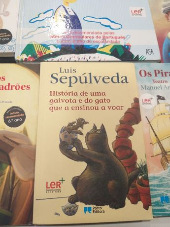 Livro história de uma gaivota e do gato que a ensinou a voar