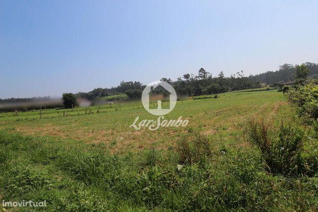 Terreno agrícola com 9000 m2, em Fradelos Vila Nova de Famalicão